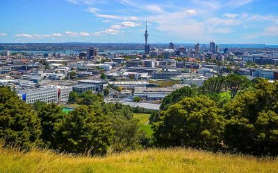 GREEN CLEANING AUCKLAND – SERVICE KING