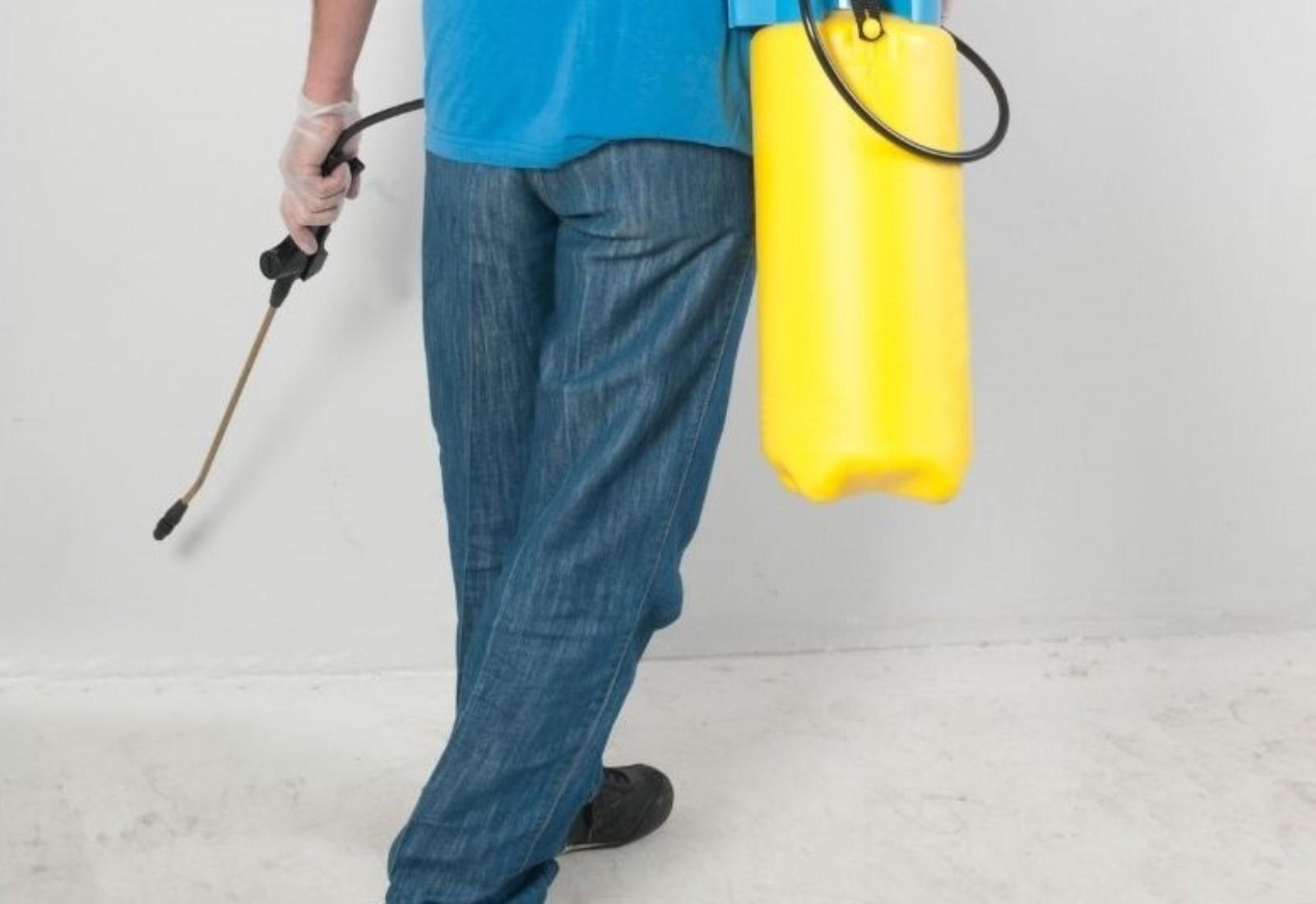 Fly spray infestation elimination extermination pest control