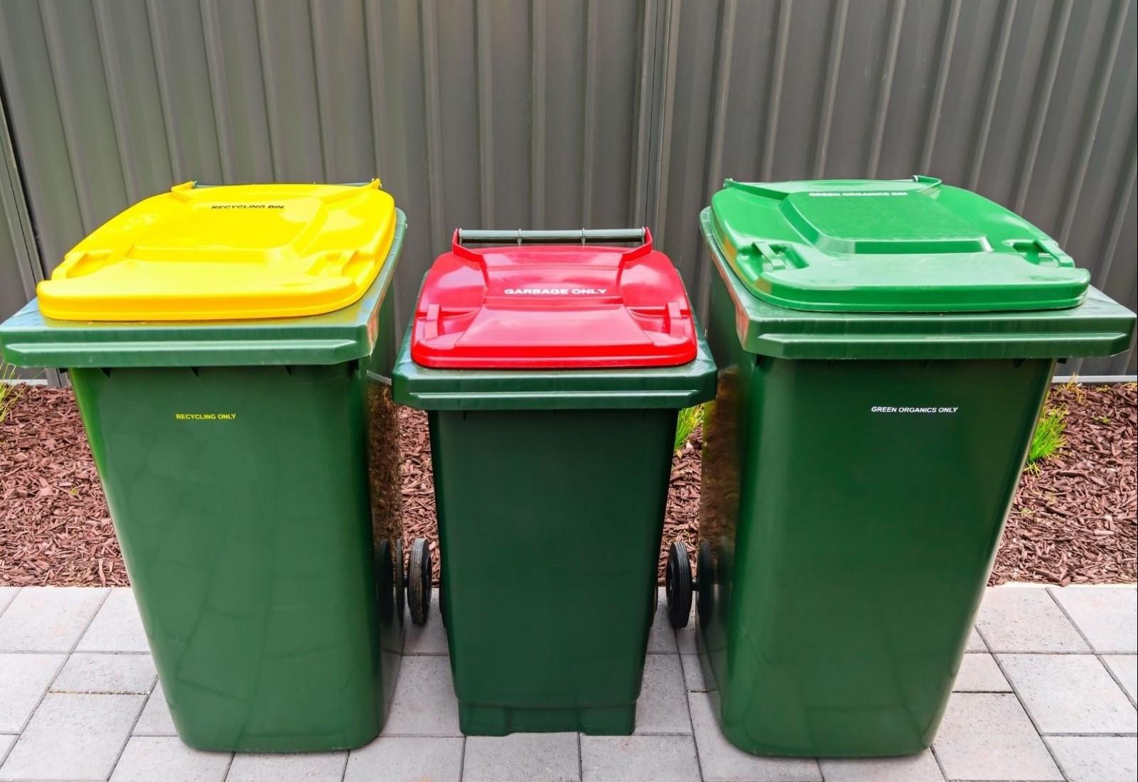 Wheelie bin wash