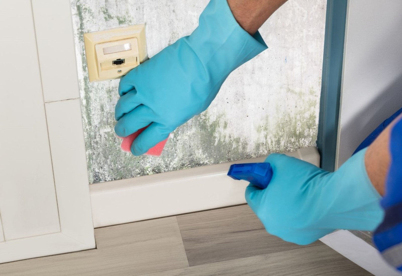 Residential ceiling wall cleaning home house